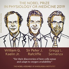 بردن جایزه نوبل وقتی همه خواب بودند!
