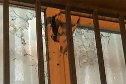 تیراندازی به سوی یک خانه مسکونی در پرند