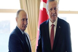 Erdoğan, Putin discuss on Turkey's attack in Syria