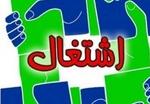 آغاز به کار وب سایت موکب اشتغال محرومان