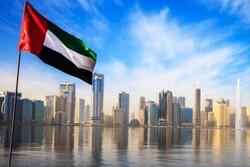 Birleşik Arap Emirlikleri'nden Türkiye yorumu