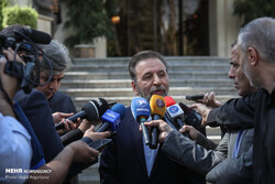 Enemies had been counting on recent unrest in Iran: Vaezi