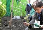 اولین مدرسه سبز استان البرز در شهر کرج ساخته میشود