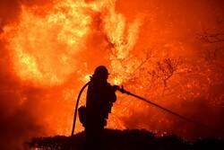 حرائق كاليفورنيا /صور