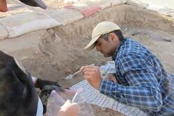 کشف بقایای ساختمان اداری بزرگ۵۴۰۰ساله در محوطه باستانی میمنتآباد