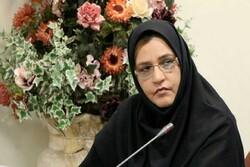 ۵۳۰۰ شغل از طریق تسهیلات مشاغل خانگی در استان تهران ایجاد شده است