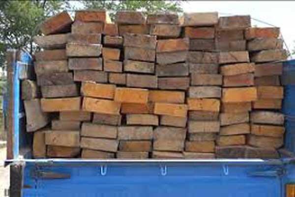۳ محموله چوب بدون مجوز در هشترود توقیف شد