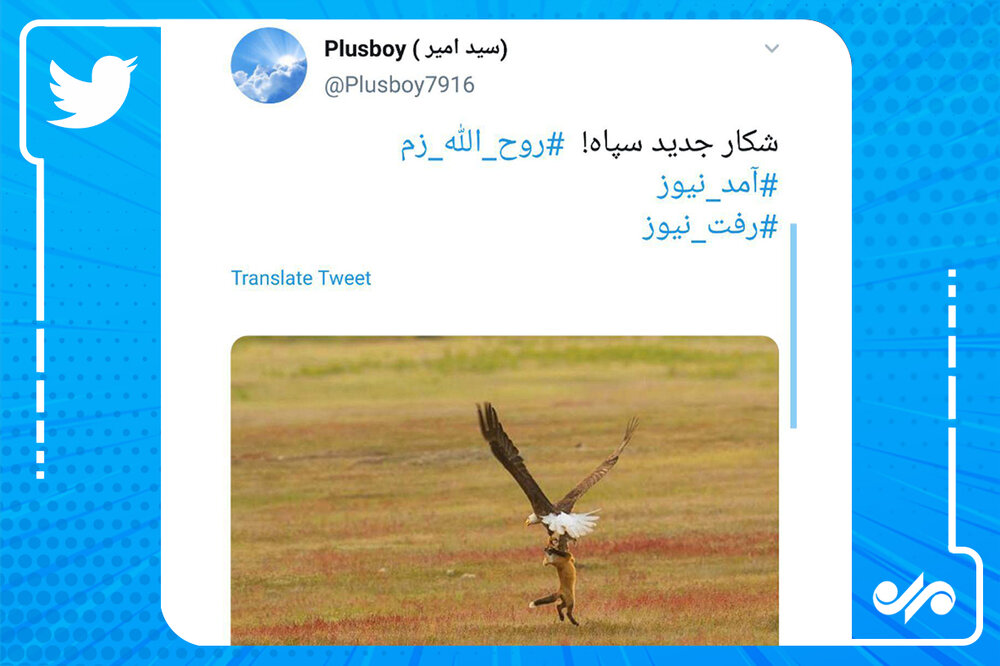 واکنش کاربران فضای مجازی به دستگیری روحالله زم