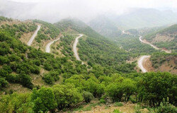 Zagros forest protection plan being implemented