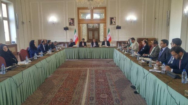 Senior assistant to Zarif expresses regret about obstructions in Stockholm agreement