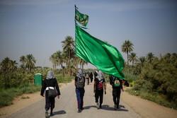 نجف سے کربلا تک طریق العلماء میں اربعین کا پیدل مارچ جاری