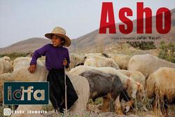 مستند کوتاه «آشو» به «ایدفا» میرود