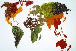 گرسنگی تهدیدی برای امنیت جهان