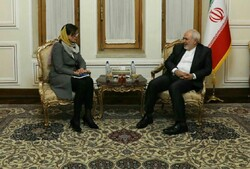 قائم مقام وزیر خارجه سوئد با ظریف دیدار و گفتگو کرد