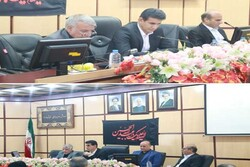 شهریار می تواند الگوی بازآفرینی مناسبی برای شهرستانهای استان باشد