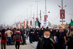 نجف اشرف سے زائرین کربلا کی سمت پیدل رواں دواں