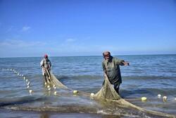 بحر کیسپیئن میں ماہی گیری کی فصل کا آغاز