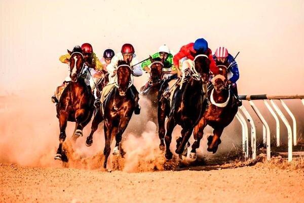 ۶۲ راس اسب در هفته هشتم کورس پاییزه آق قلا رقابت میکنند