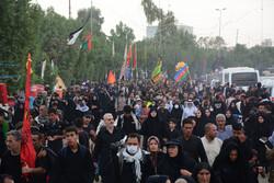 رستاخیز عظیم اربعین حماسه وحدت بین مسلمانان و ادیان الهی است