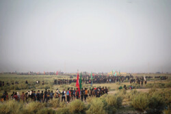 Arbaeen march reaching its height