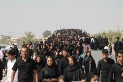 مراسم پیاده روی اربعین در امامزاده علی(ع) سیرجان