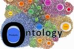 کنفرانس بینالمللی هستیشناسی برگزار میشود
