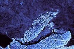 کوه یخی در ابعاد شهر بوستون از قطب جنوب جدا شد