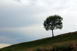 دریاچه نئور نگین گردشگری اردبیل