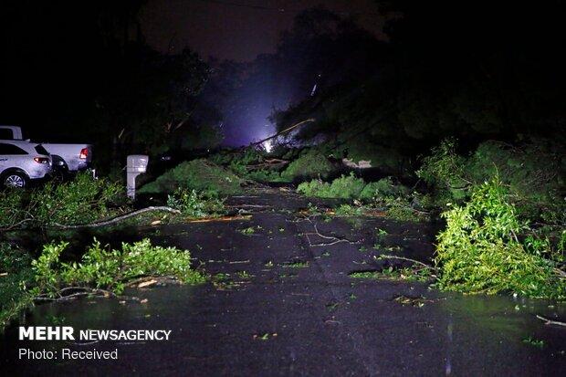 طوفان نستور در آمریکا 