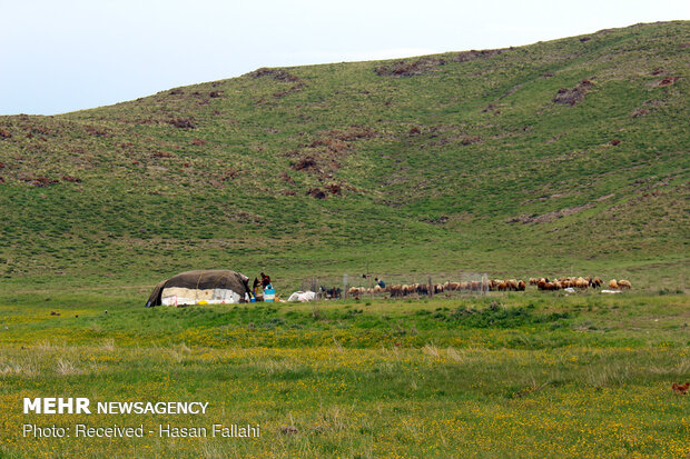 Neor Lake, a hidden-gem travel destination in Ardabil