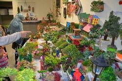 درخواست ایجاد موزه برای نمایش آثار مینیاتوری «آقای سبز»