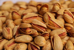 VIDEO: Processing pistachios in Yazd