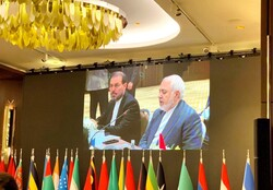 Expecting protection from US 'suicidal': FM Zarif