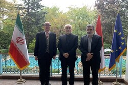 Strategic coop. between Tehran-Vienna 'actualized' practically