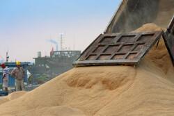 چین خرید ۱۰ میلیون تن دانه سویا از آمریکا را از تعرفه معاف کرد