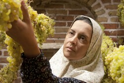 """Nazanin Farahani acts in a scene from """"The Paternal House""""."""