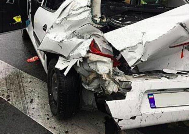 برخورد پژو پارس با دو راس گراز در ایلام/ یک نفر زخمی شد