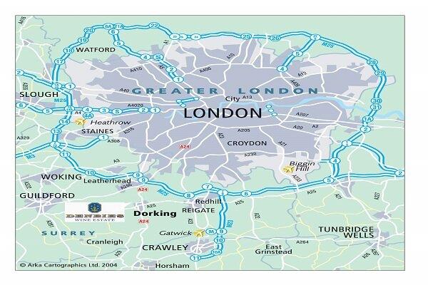 Londra'da bir kamyonun içinden 39 ceset çıktı!