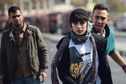 بهرام رادان «گربه سیاه» را تهیه میکند/ فیلمی برای جوانان