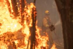 کیلیفورنیا کے جنگلات میں خوفناک آگ لگی گئی
