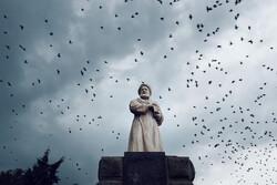 Hemedan kentinde sığırcık kuşlarından ilginç görüntüler