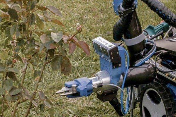 ربات باغبان را تماشا کنید