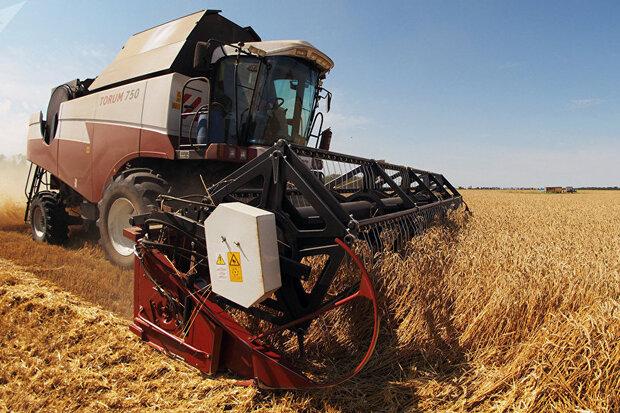 روسیه سالانه یک میلیون تن گندم به لیبی صادر میکند