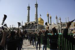 برنامههای حرم بانوی کرامت در سالروز شهادت امام عسکری(ع) اعلام شد