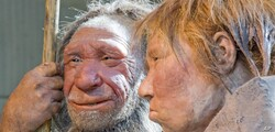 FILE: A March 20, 2009 photo shows reconstructions of a Neanderthal man, left, and woman, at the Neanderthal Museum in Mettmann, Germany.