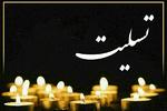 وزیر فرهنگ و ارشاد اسلامی درگذشت خبرنگار همدانی را تسلیت گفت