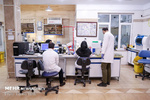 برنامه وزارت علوم برای افزایش جذب و استخدام پژوهشگر پسادکتری