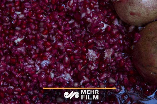 دانههای بهشتی هورامان