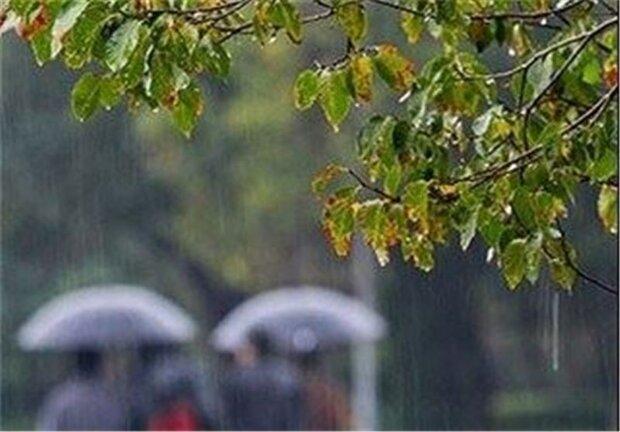 بارش ۵۵ میلیمتری  باران در شیراز