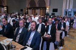 Iran calls on UNIDO to be more active in its industrial projects